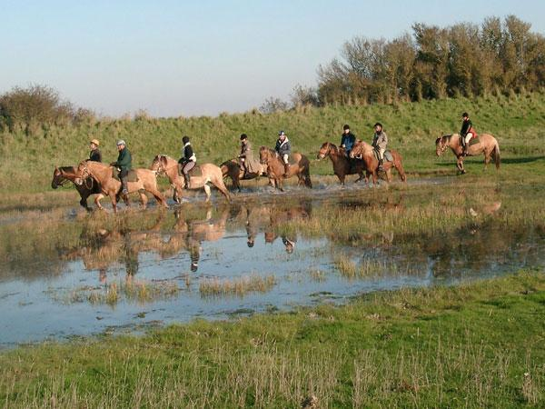 rando equestre bas champs ponthoile, Somme